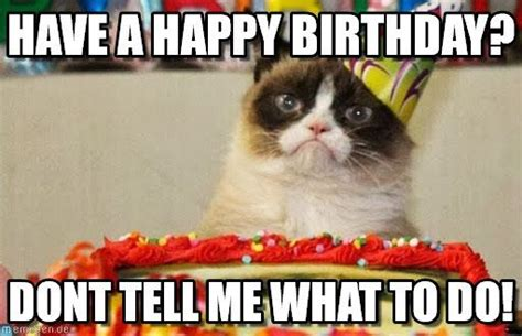 Birthday Grumpy Cat Meme - have a happy birthday grumpy cat birthday meme on memegen grumpycat pinterest cats
