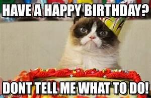 Have A Happy Birthday? - Grumpy Cat Birthday meme on ...