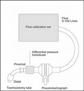 Tracheostomy Tube Type And Inner Cannula Selection Impact