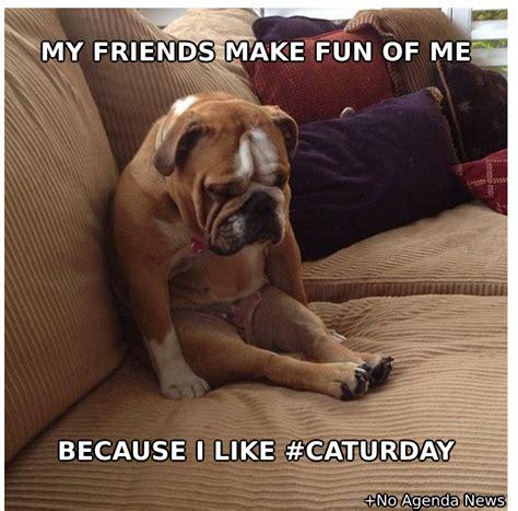 Caturday Meme - no agenda news secret caturday fan
