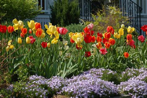 bathroom reno ideas small bathroom flower borders ideas to your landscaping sizzle