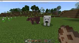 Grizzly Bears Over Llamas Minecraft For Windows 10 Mods