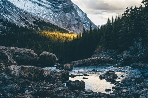 mountains nature forest water landscape rock