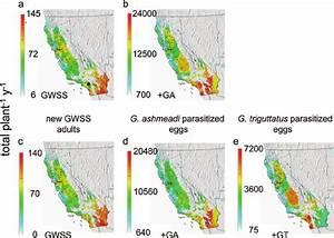 Gis Maps Of Simulated Cumulative Glassy