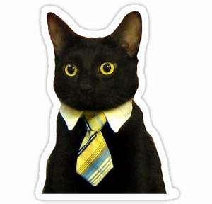 """Business Cat"" Stickers by adamrwhite Redbubble"