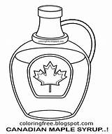 Maple Syrup Coloring Canada Printable Clipart Canadian Jug Drawing Tree Bottle Leaf Diagram Sketch Template Map sketch template