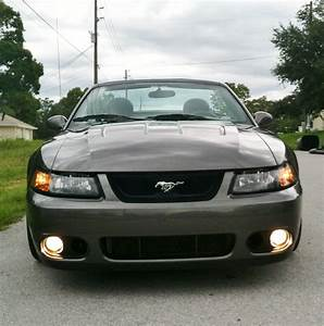 2003 Ford Mustang SVT Cobra - Pictures - CarGurus