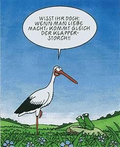 Frosch Bilder Lustig : die besten 17 bilder zu humor auf pinterest manche zuhause und korn ~ Whattoseeinmadrid.com Haus und Dekorationen