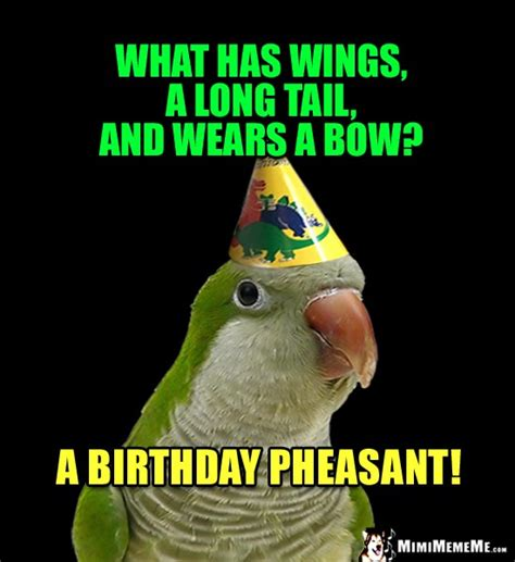 happy birthday riddles birthday riddles are funny happy birthday jokes hilarious b day memes pg 5 mimimememe