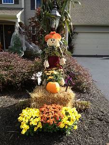 Fall, Harvest, Outdoor, Display