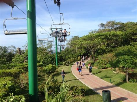 on the chair lift picture of mahogany roatan