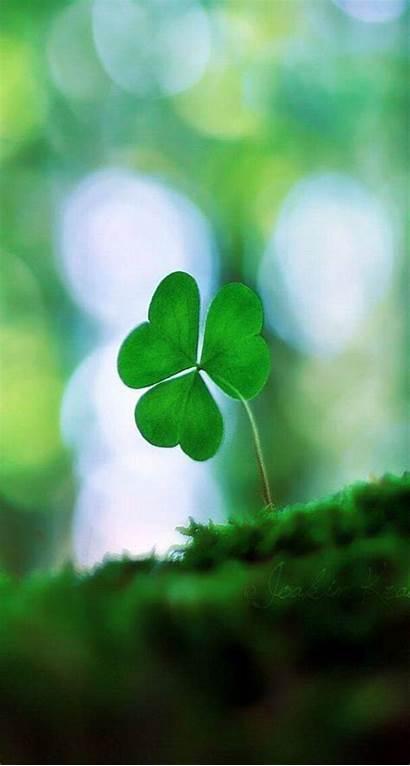 Iphone Irish St Patrick Clover Patricks Wallpapers