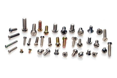 What Are The Different Types Of Screws Available In The