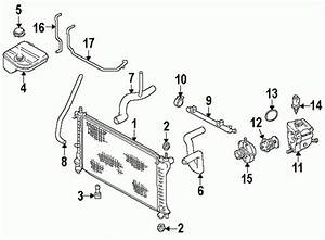 2000 Ford Focus Coolant Diagram