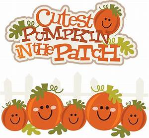 Cutest Pumpkin In The Patch SVG pumpkin clipart cute ...