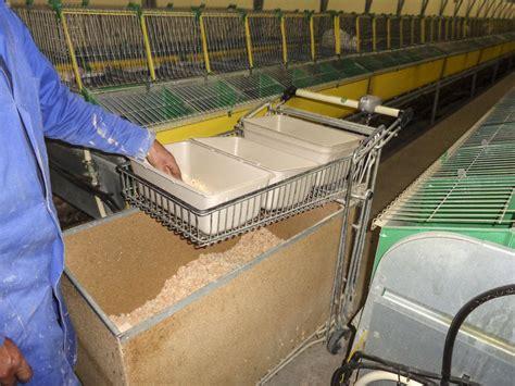 chambre d agriculture pays de la loire lapin un recueil d 39 astuces sur le confort de travail