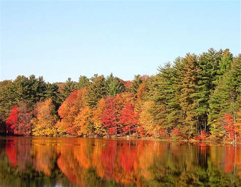 fall   great time  rent  campervan  rv   usa
