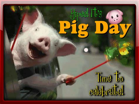 cute pig day card pig day ecards greeting cards