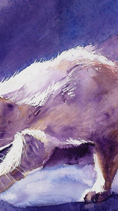 paintings cats animals artwork watercolor wallpaper