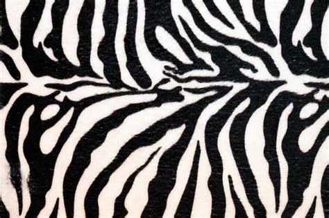 Zebra Print Background Er Bae Zebra Print Backgrounds