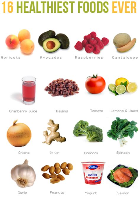 16 healthiest foods ever urban mogul life