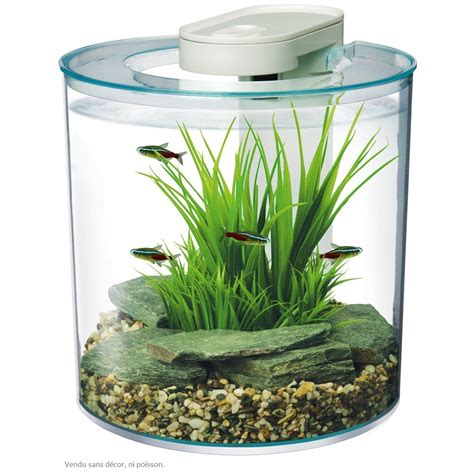aquarium poisson marina 10l pour petit poisson animal co