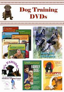5 dog training dvds to raise a healthy dog With dog training dvd
