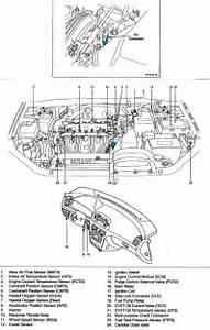 2010 Hyundai Accent Gls Engine Diagram  Hyundai  Auto