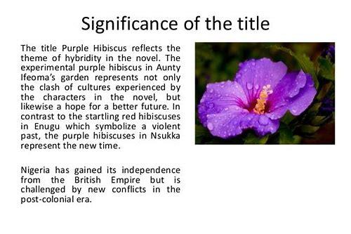 Purple Hibiscus Novel Download Minsiteres