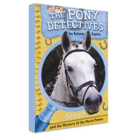Image result for the pony detectves