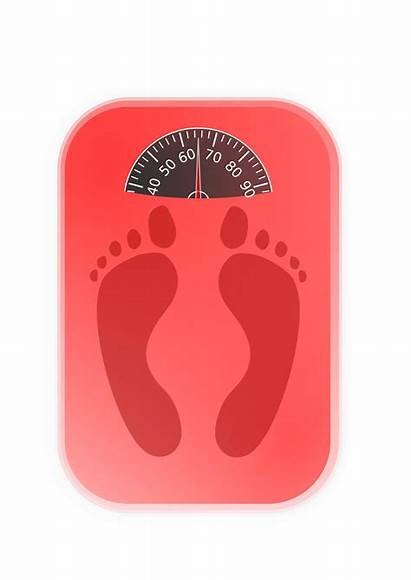 Weighing Clipart Machine Weight Clipground Vectors Openclipart