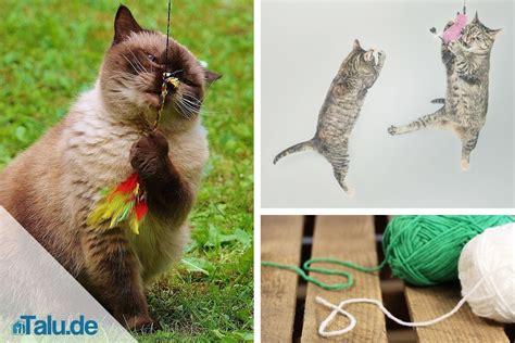 katzenspielzeug basteln ideen katzenspielzeug selber machen schnelle ideen zum basteln talu de