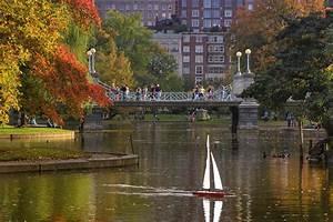 Boston Public Garden Photograph by Joann Vitali