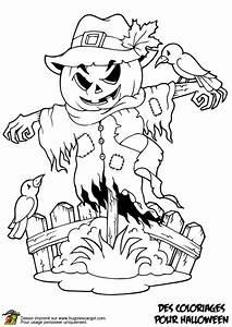 Dessin Halloween Vampire : coloriage citrouille epouvantail sur ~ Carolinahurricanesstore.com Idées de Décoration