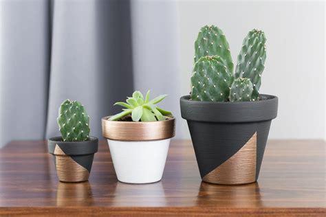 modern plants modern mini painted plant pots