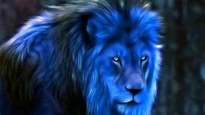 Midnight Blue Fantasy #Blue #Lions #Wallpapers ...