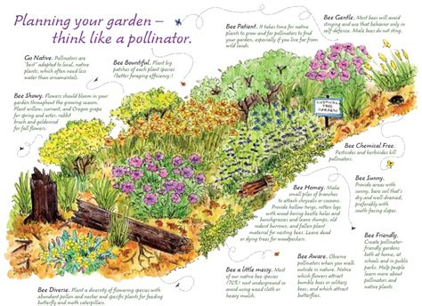 planning your garden recommendations what can we do bumble bee conservation n w