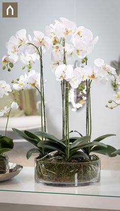 die  besten bilder von kuenstliche pflanzen