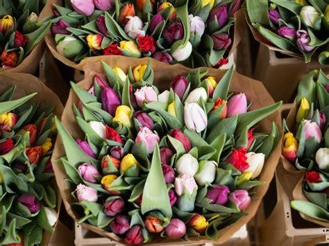 wedding flower guide  season color  price details