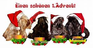 4 Advent Bilder Tiere : 4 advent hund bilder19 ~ Haus.voiturepedia.club Haus und Dekorationen