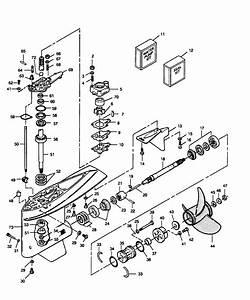 Suzuki Outboard Engine Wiring Diagram