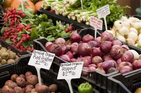 cuisine innovation is organic food better for you food innovation factory