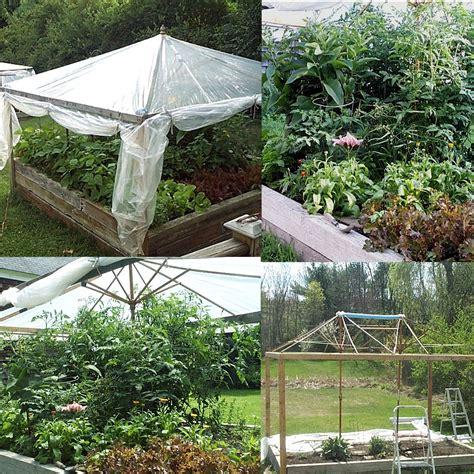 Best Material Raised Garden Beds
