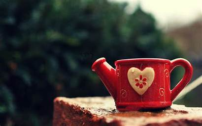 Wallpapers Cup Watering Mug Heart Definition Allfreshwallpaper