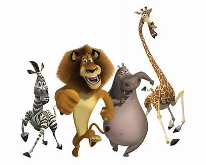 Shrek Madagascar Cartoon Characters