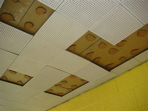 vintage ceiling tile asbestos adhesive partial view