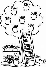 Apple Coloring Pages Tree Printable Clipart Picking Clip Print Basket Fall Colouring Library Play Cliparts Fotolip Sheets Fun Chore Cabin sketch template