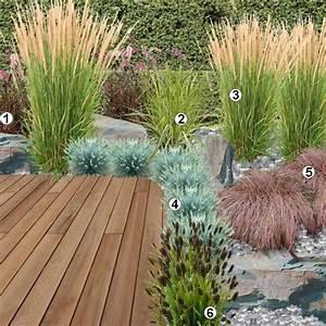 17 meilleures idees a propos de graminees sur pinterest With modele de rocaille de jardin 17 fleurs de bordure liste ooreka