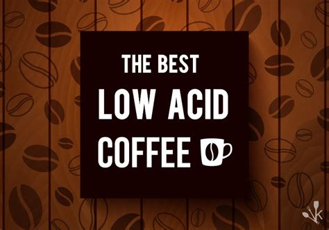 acid coffee reviews buying guide kitchensanity