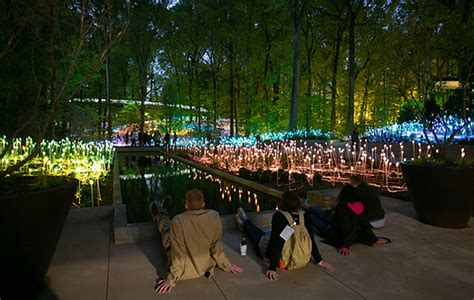 city park water and light installation is here at artist showacases led light installation in u s parks Inspirational